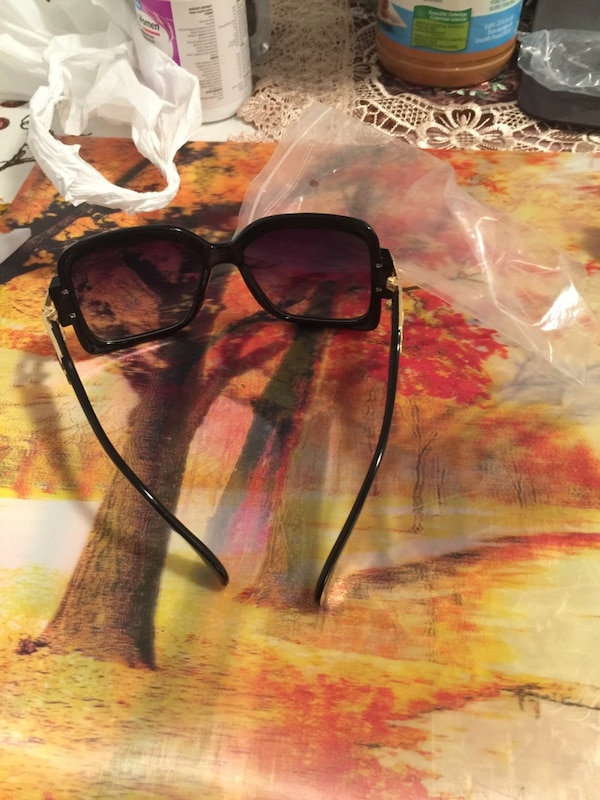 Black Frame Catal Sun Glasses 2