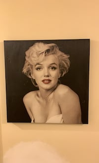 Monroe Painting Annandale, 22003