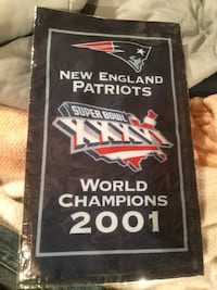 New england patriots world champions poster Walpole, 02081