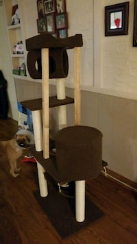 Cat climbing scratch post  Mississauga, L5J 2Y4
