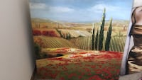 Poppy by Steve Thoms painting