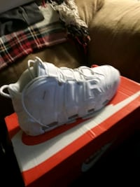 Pair of size 10 Nike Uptempo (Scottie Pippen) Bristol, 19007