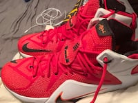 Lebron 12s Heart of a Lion Size 14 Indianapolis, 46228