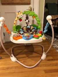 Fisher Price Go Wild Jumperoo Andover, 01810