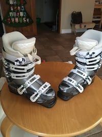 Pair of black-and-gray ski boots