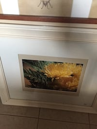 yellow petaled flowers photo with brown wooden frame