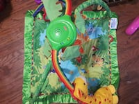 green and blue animal print activity gym