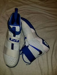 Lebron James Soldiers 10's (Size 17)