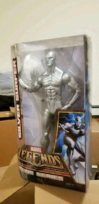 Silver surfer icon series  Queens, 11369