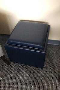 Footrest and storage bin