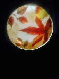 Pier 1 Autumn Salad Plates (10) Woodbridge, 22191