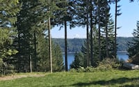 Recreational  Lot 4 Sale Mt Rainier Hood Canal Views