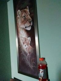 Wildlife's lioness and cub wall portrait  Fort Myers, 33901