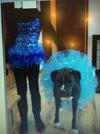 Halloween Costume Youth Med + Xtra Tutu Dover township, 17315