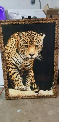 Leopard Picture Frame Orosi, 93647