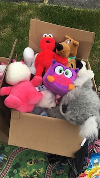 Box of stuffed animals only $2 each Mississauga, L5N 6Z4
