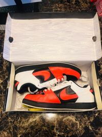 Nike SB zoom team edition size 13 preowned  Richfield, 55423