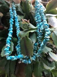 Turquoise howlite necklaces sold separately  Travelers Rest, 29690