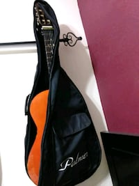brown classical guitar with case