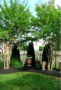 Landscaping services Mastic, 11950