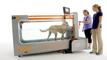 The Oasis -  Underwater Treadmill for Canines