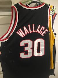 THROWBACK NBA Legend  RASHEED WALLACE BLAZERS NIKE SWINGMAN (XL) Washington, 20016