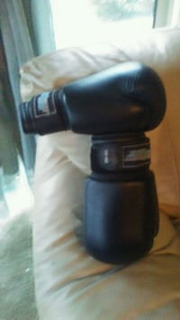 Boxing Gloves  3689 km