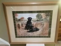 Black Lab picture framed 32x 38