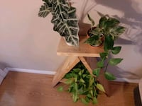 homemade plant stand