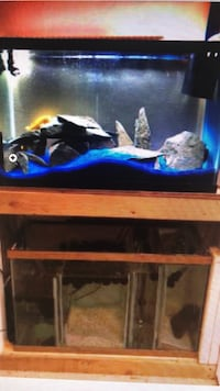 Aquariums for sale Loveland, 80537