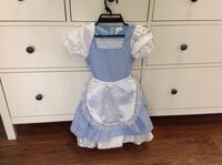 Alice in wonderland / Dorothy wizard of oz dress costume new 468 km