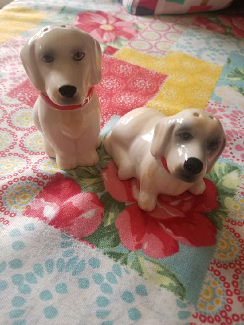 Photo Pioneer Woman Salt and Pepper Shakers