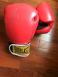 Boxing Gloves Stafford, 22556