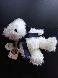 Small white Teddy Bear - new with tags