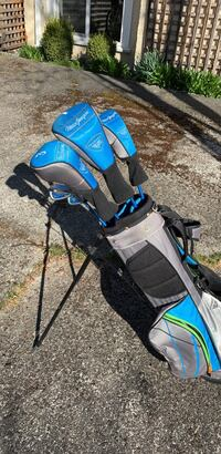 Black and blue golf bag & club set.
