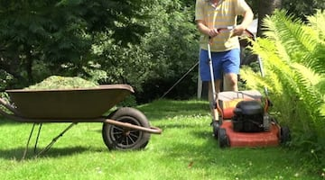 Lawn mowing services/Snow