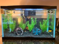 10 gallons fish tank Washington