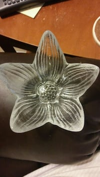 Glass flower bowl Fredericksburg, 22407