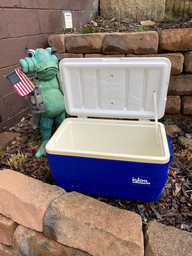Photo Pick up today clean Igloo cooler $10, pick up in Monroeville,