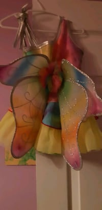 Costume(Fairy or Butterfly)
