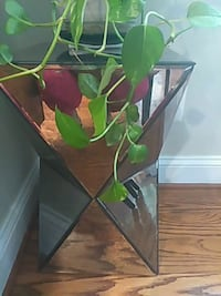 Mirrored table by west elm Arlington, 22201