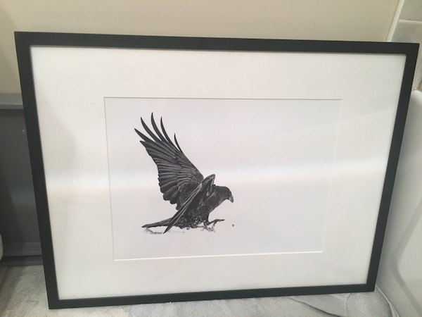 white and black eagle painting