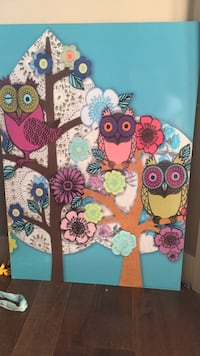 Owl picture  Sherwood Park, T8H