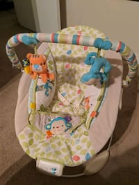 baby's white and green bouncer Edmonton, T5A 4M3