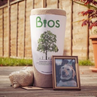 Bios Urn. For your Pet. Amazing!