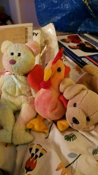 RARE beanie babies, fetch, groovy, and doodle Minneapolis