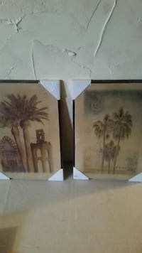 Set of Palm Tree Pictures  Brunswick, 44212