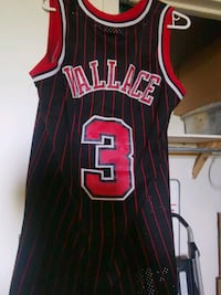 Ben Wallace Number 3 Chicago Bulls Jersey