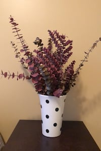 Dried eucalyptus and dotted vase