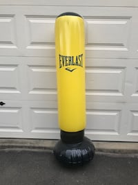 Everlast blow up punching bag